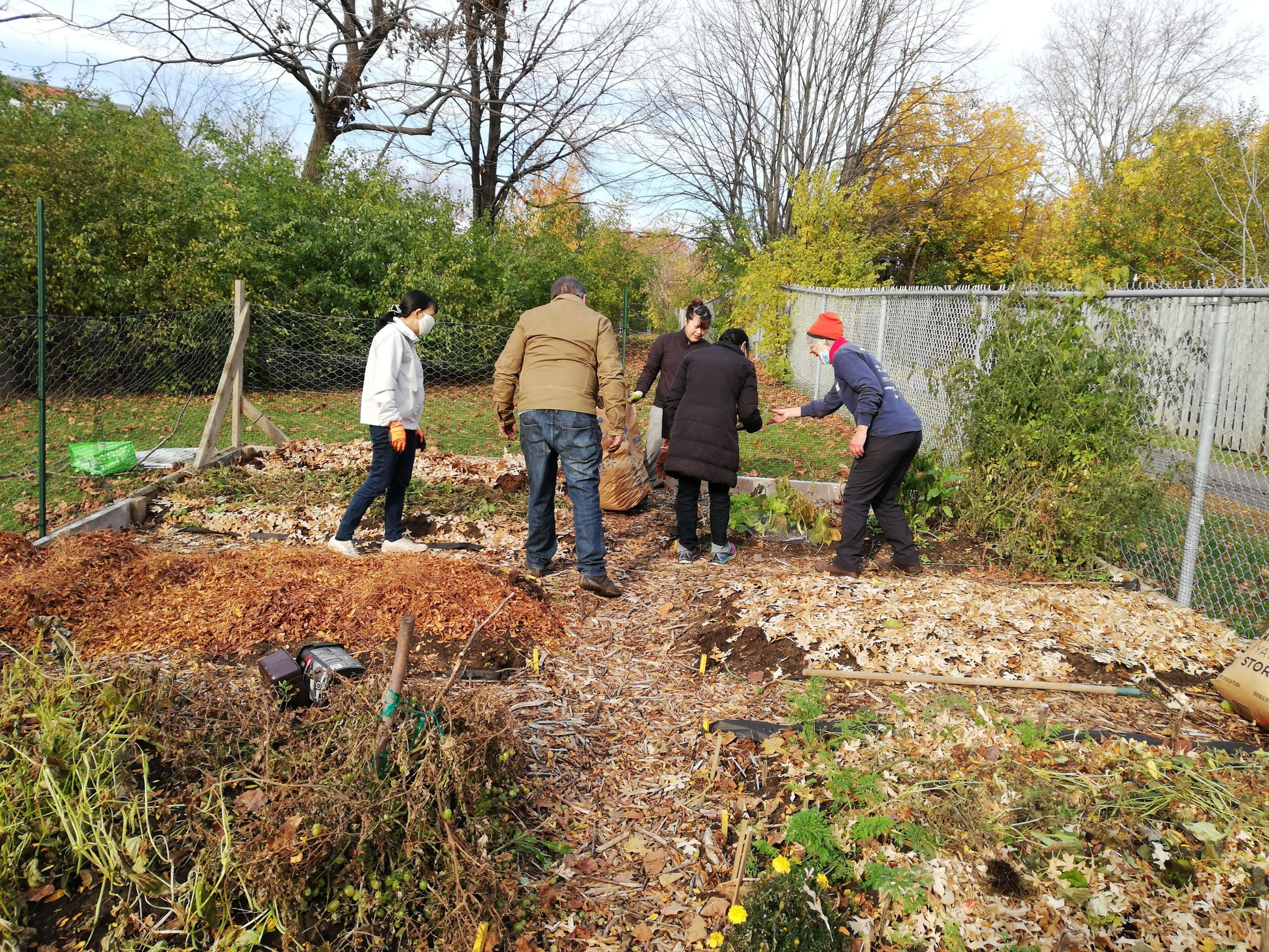 What We Learned this Summer at Our CommunityGarden