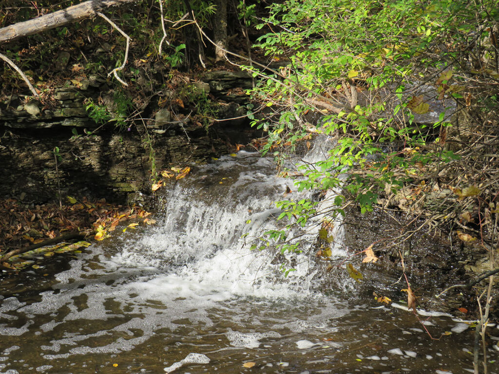 Hunt Club Creek flowing into the Rideau River